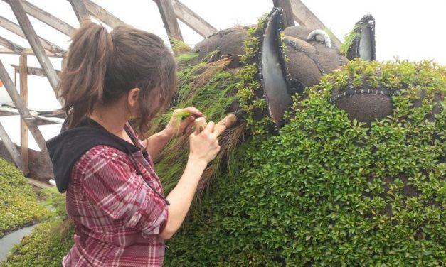 Canadá prepara un mosaico de esculturas 'verdes' para su 150 aniversario