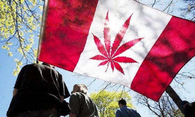 La nueva Ley de Cannabis en Canadá: Guía para no perderse