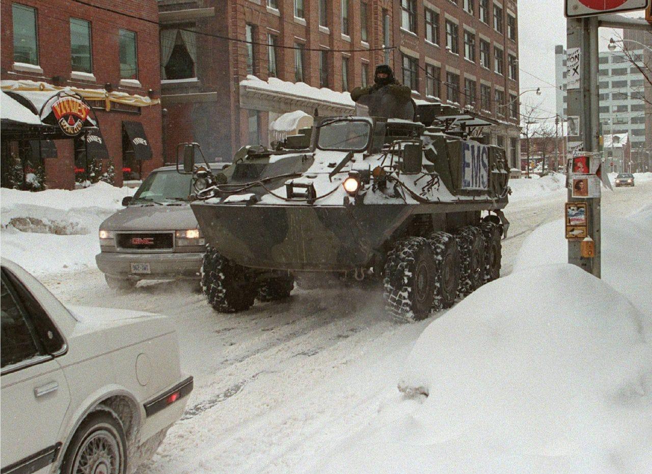 Armed Forces Bison